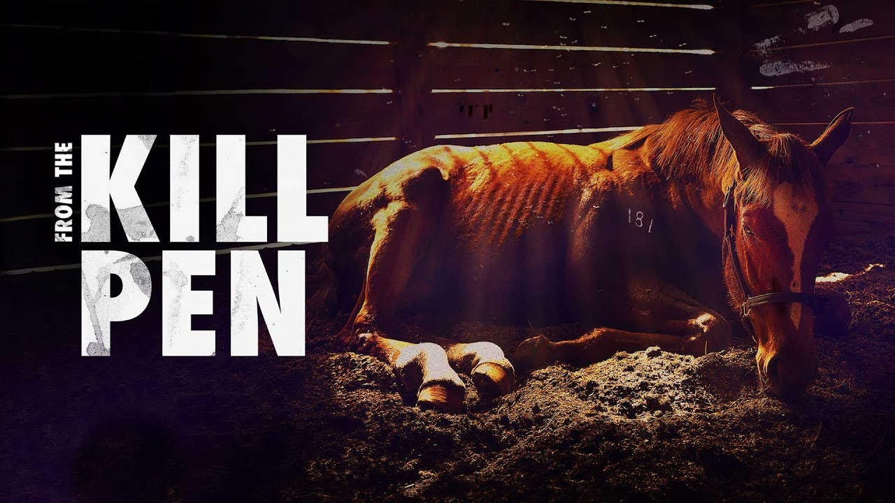 From the Kill Pen Documentary Film Trailer | FlixHouse.com