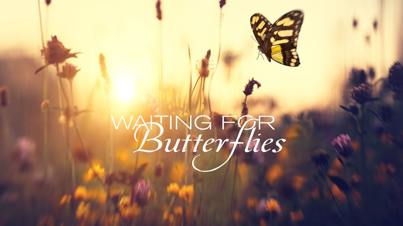 Waiting For Butterflies Movie Trailer   FlixHouse.com