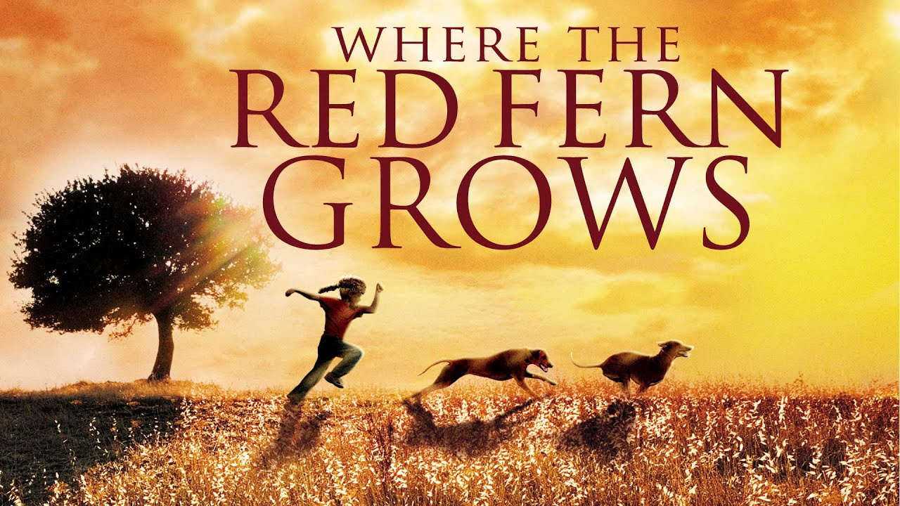 Where the Red Fern Grows 1 Movie Trailer   FlixHouse.com
